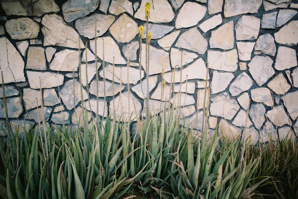 palm springs on coachella weekend