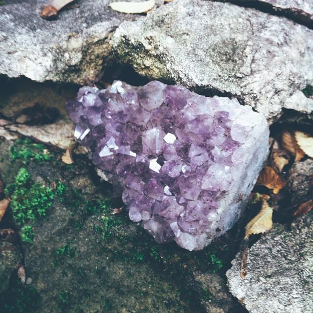 Found this in our rock garden.