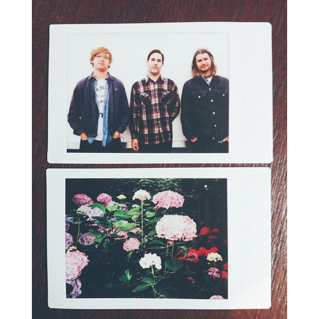Metz and some flowers. #instax #vsco #metz #eotr