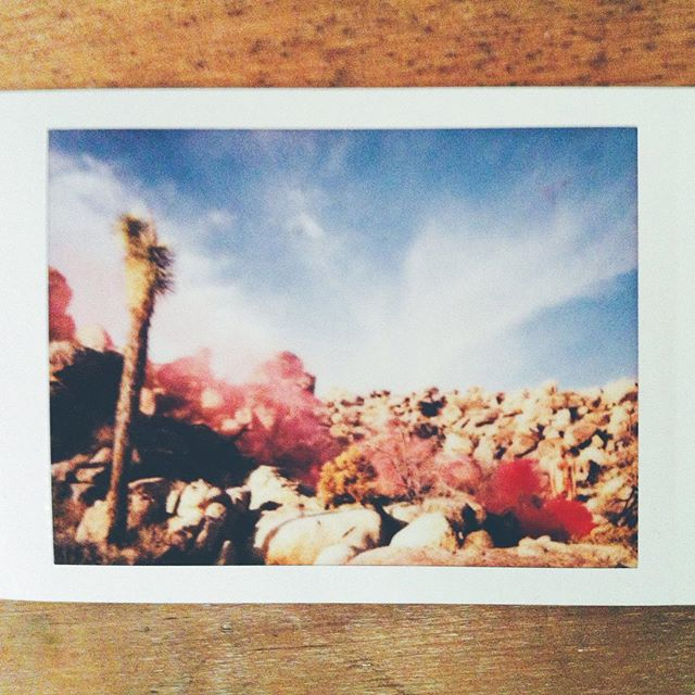 New favourite superhero, Nudie Smokebomb #vscocam #instax #california #makeportraits